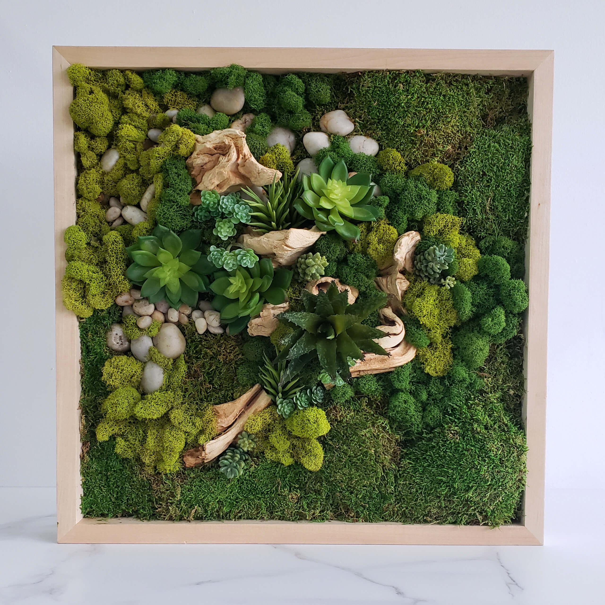 Cadre végétal 01