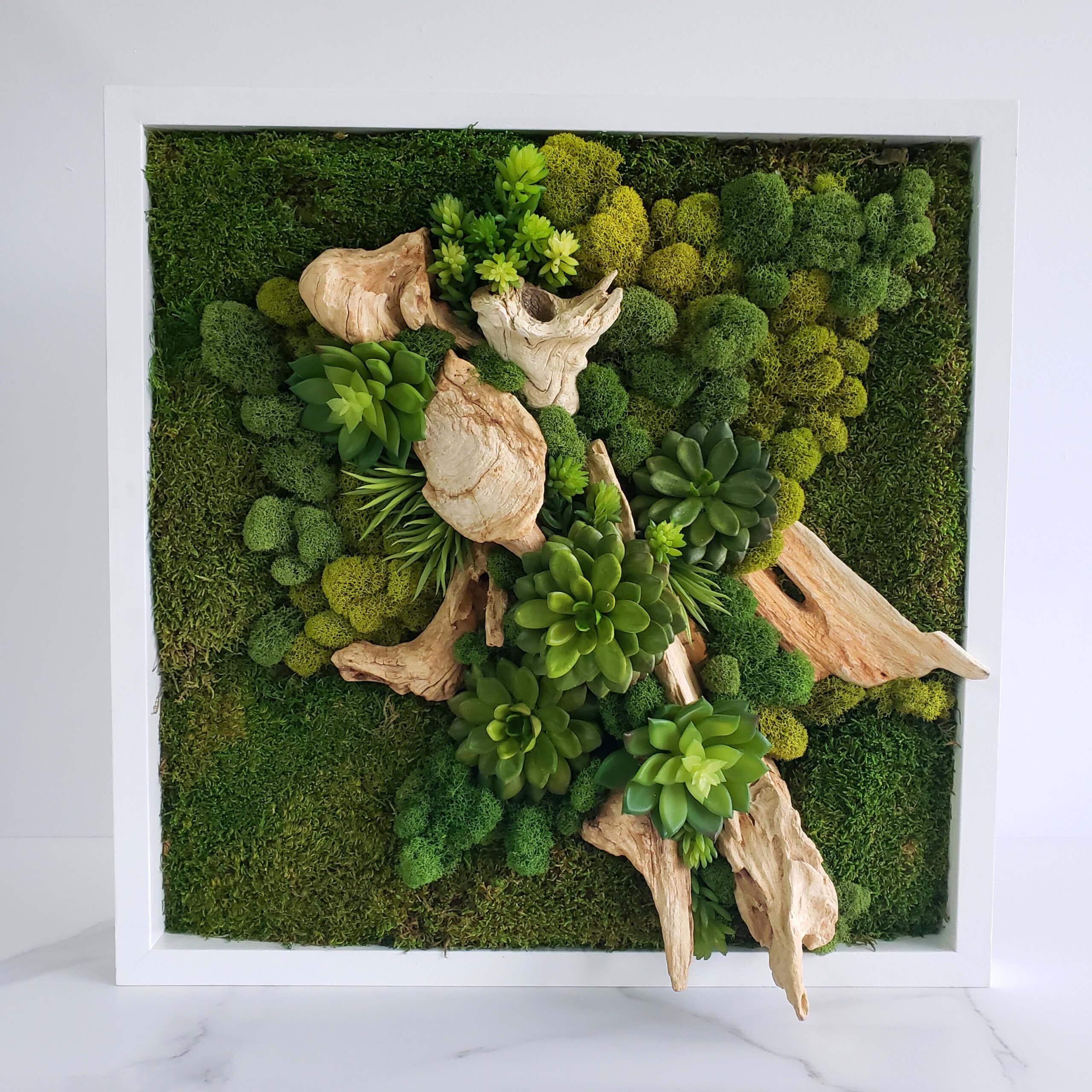 Cadre végétal 02